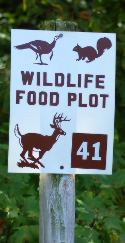 caney mountain food plot